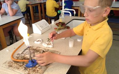 Using the Labs at Thorp Academy