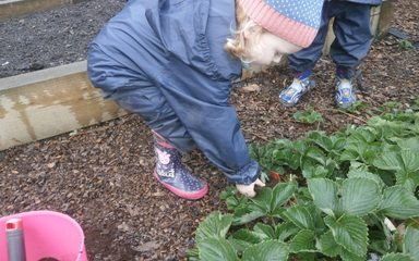 Nursery love exploring the allotment!