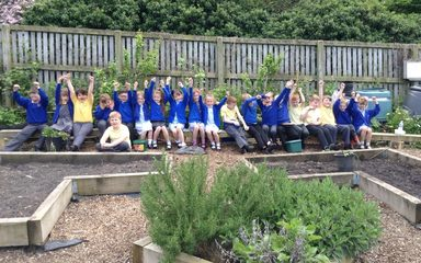 Year 3 Allotment Visit
