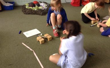 Catapult Investigations!