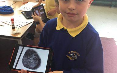 Fingerprints Under Examination!