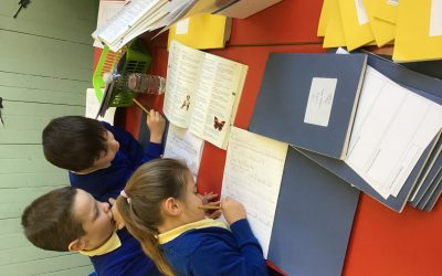Dictionary Skills in Year 2