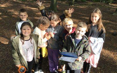 Exploring habitats at Gibside.